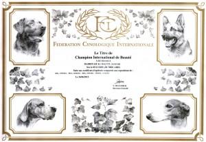 FCI certificate
